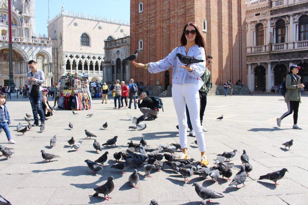 Holubi, všude samí holubi