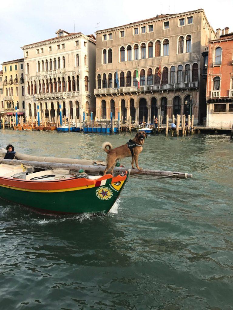 Plavba po kanále v Benátkách